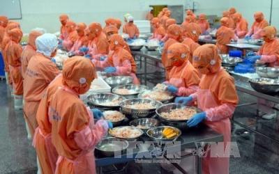 Bốn thị trường nhập khẩu mạnh thủy sản Việt Nam