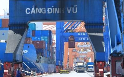 Xuất nhập khẩu hậu COVID-19: Đón luồng gió mới từ hiệp định EVFTA